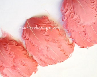 SET OF 5 -  Coral Pink Nagorie Curled Goose Feather Pads
