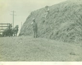 Farmers Stacking Hay Stray Horse Team Wagon Farm Men Antique Vintage Black and White Photo Photograph