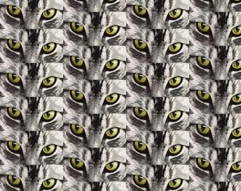 tabby cat eyes fabric