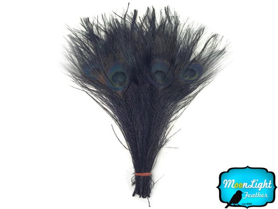 Peacock Feathers, 50 Pieces - Wholesale BLACK Bleached and Dyed Tails Peacock Feathers (bulk) :1292
