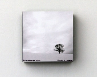 Minimalist Wall Art, Black and White Lone Tree, Snow, Fine Art Photography, 4X4 Wood Panel, Landscape, Nature, Ready to Hang