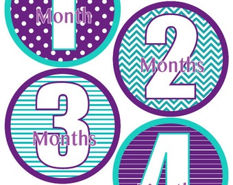 Baby Month Stickers Baby Girl Monthly Stickers Purple and Teal Month Stickers Girl Baby Shower Gift and Photo Prop Ali-T