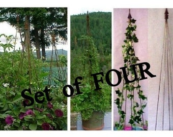 Free Shipping on FOUR Elegant Trellis Towers Set.  All Metal perfect for Clematis, Jasmine, Morning Glory, Tomatoes