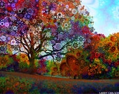 Afternoon Light- autumn fall trees colorful trippy surreal photograph / visonary art