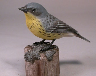 Kirtland's Warbler Wood Carving Carved Wooden Bird