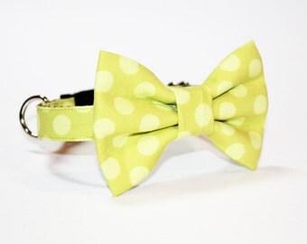 dog bow tie collar- dog bow collar- apple green polka dot- Dog Collar