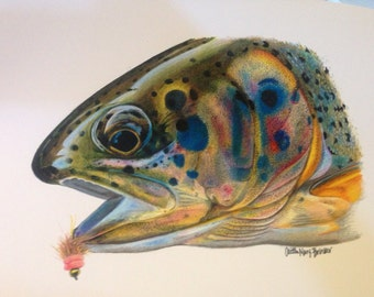 Colored Pencil Rainbow Trout Limited Edition Print