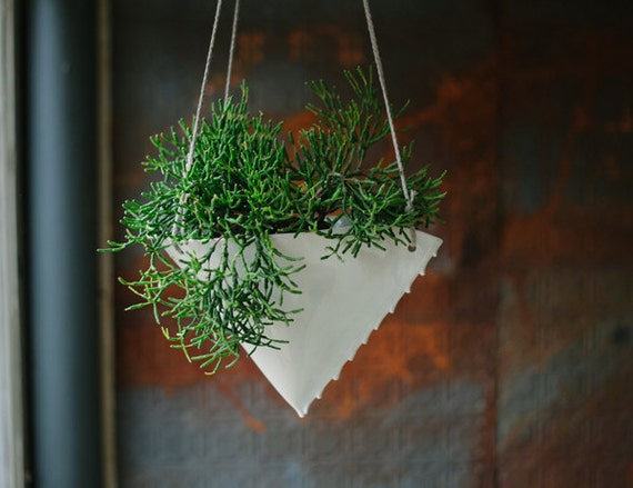 Large Hanging Planter - Scallop Design