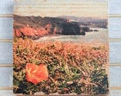 "Best View in the House: Mori Pt. Poppy - 7x7"" Distressed Photo Transfer on Wood"