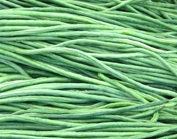 Beans Orient Wonder Yard Long Bean Seeds Beautiful Long