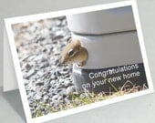 New home card - Funny cards - Chipmunk congratulations greeting card - Funny card cute card (Blank inside)