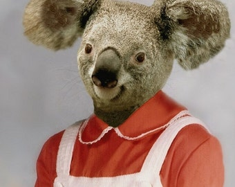 Kara Koala, School Portrait - 8 X 10 Art Print