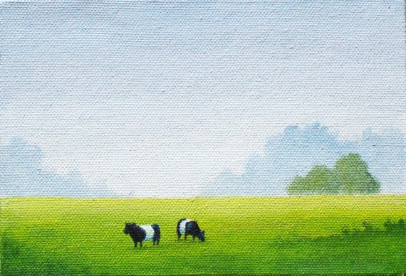Belted Galloways 4 x 6 Print by SBMathieu