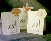 Beach Wedding Table Numbers - Shells - Weddings- Events -  Paties - Holidays - Celebrations - Seating