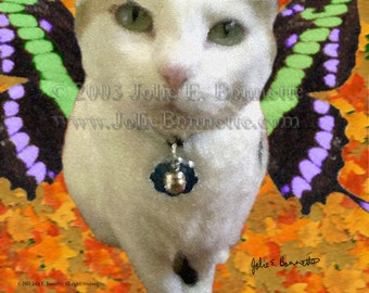 Fairy Cat Limited Print - Award Winner- Clearance Price