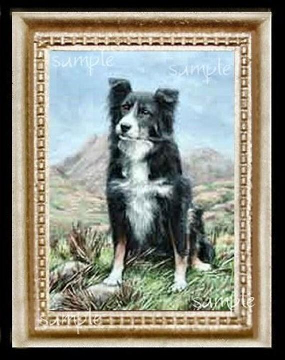 Border Collie Dog Miniature Dollhouse Art Picture 3201