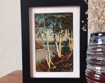 Rippling Water and Silvery Birches, White Mountains, New Hampshire - framed vintage postcard