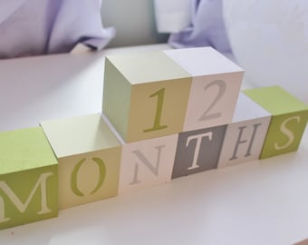 Baby Blocks- Photo Prop for Weekly and Monthly Baby Pictures- Set of 20 Blocks