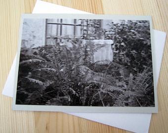 Monochrome Overgrown Garden Blank Greeting Card Photography