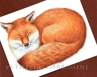 FOXY  No.1-- ACEO PRINT  collectible card