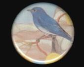 "1.25"" Blue bird button - pinback button or magnet"