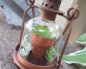 Vintage Brass Hanging Lantern with Glass, Plant Holder, Terrarium, Potted Plant, Display Glass Case