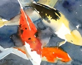 Koi Fish No.6, limited edition of 50 fine art giclee prints