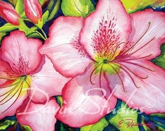 Azaleas - Pretty pink azaleas floral signed giclee art print of pink azaleas