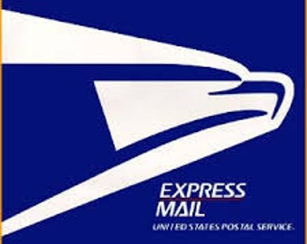 Domestic USPS Express Shipping Upgrade - US Only - shopping cart add on