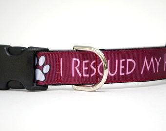 Dog Collar - I Rescued My Human - Large