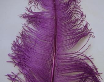 OSTRICH Plume Purple  ostd-19 craft feathers