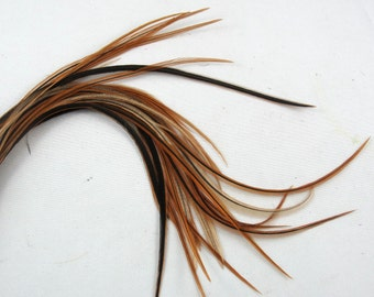 12 long feather hair extensions golden badger  6 to 10 inches  natural k208