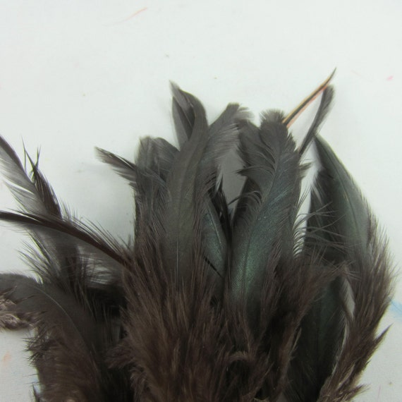 24 black saddle feathers 3 to 6 inches  loose feathers fly tying k151