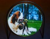 St. Bernard Recycled CD Clock Art