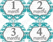 ON SALE Baby Monthly Bodysuit Stickers - 1st year (DAMASK turquoise teal & Grey ) Girl Milestone, Photo prop, Baby Shower Gift