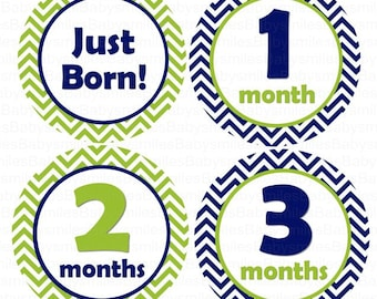 FREE GIFT Baby Month Stickers Boy Monthly Stickers Month Stickers Monthly Photo Sticker Milestone Stickers Month Bodysuit Stickers Chevron