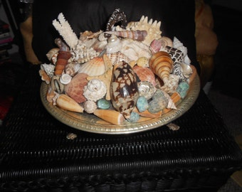 Covered silver serving dish encrusted with sea shells OOAK