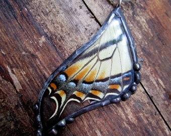 Real Butterfly Wing Pendant - Eastern Tiger Swallowtail