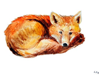 """Original watercolor or Limited Edition color Print in 5"""" x 7"""" -  Fox resting."""