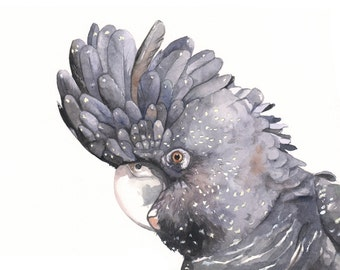 Black Cockatoo watercolor- print of watercolor painting - bird print  5 by 7, bird art, wall art, home decor
