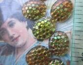 Mini Amazing Vintage Snakeskin Cabochons