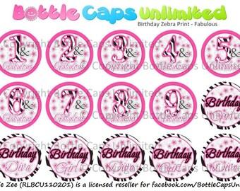 "15 Birthday Zebra Print Fabulous Download for 1"" Bottle Caps (4x6)"