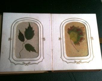 Victorian 1867 Pressed Leaf Botanical Scrapbook