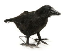 """Black Crow, Feathered, Standing, 7.4"""" long, Halloween Embellishment, Decor, Wreath & Floral Supply, Raven, Darice Craft, Faux Bird"""