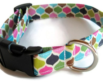 Modern Punk Dog Collar size Medium