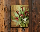 In Red - Calla Lily Flowers 16x20 Canvas Wrap Print - Red decor- Red flowers wall art - Red wall art - Red Valentine.
