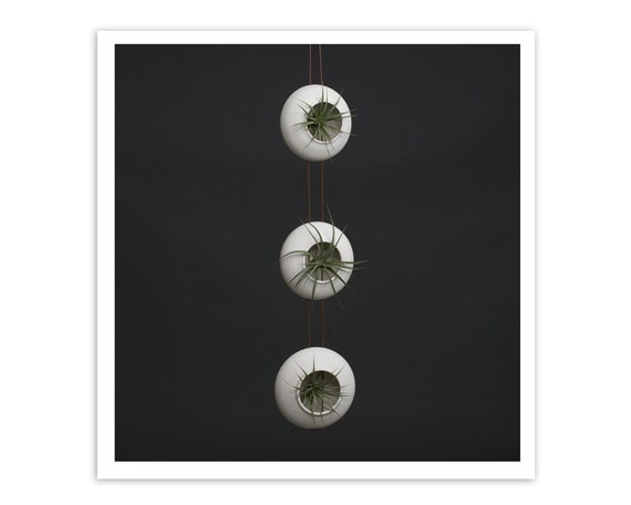 Hanging Air Planters - Set of three - Handmade Fine Porcelain