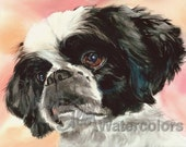 "Shih Tzu, Blac, White, AKC Toy, Pet Portrait Dog Art Watercolor Painting Print Picture, Wall Art, Home Decor, ""Puppy Dog Eyes"" Judith Stein"