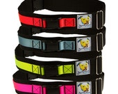 Hands Free Dog Leash Belt - Enjoy Walking Your Dog Again