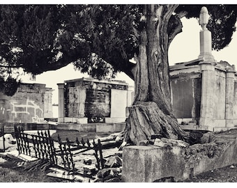 At Rest In New Orleans- Matted Photograph- Black and White